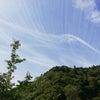 高尾山へ行ってきました!の画像