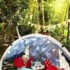 GWの想い出 ① 庭でテント編の画像
