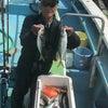 アジ釣り便行ってきましたの画像