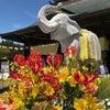 千葉の長福寿寺への旅の画像