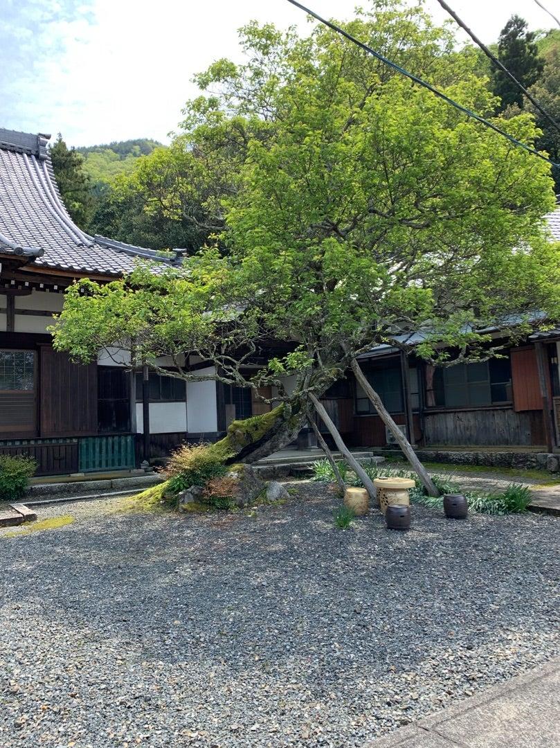 《滋賀》正行院・加賀藩と関係のあるお寺