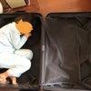 関西旅行①の画像
