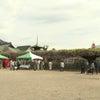 平成最後の藤まつり茶会の画像