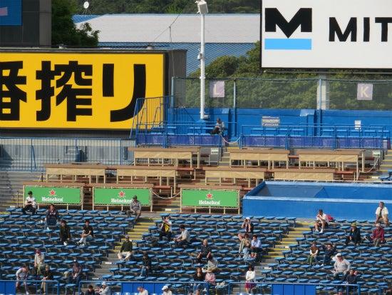 神宮球場 ハイネケンパーティーデッキ 遠景2