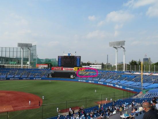 神宮球場 ハイネケンパーティーデッキ 遠景