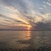 早朝一発‼️カサゴ便の画像