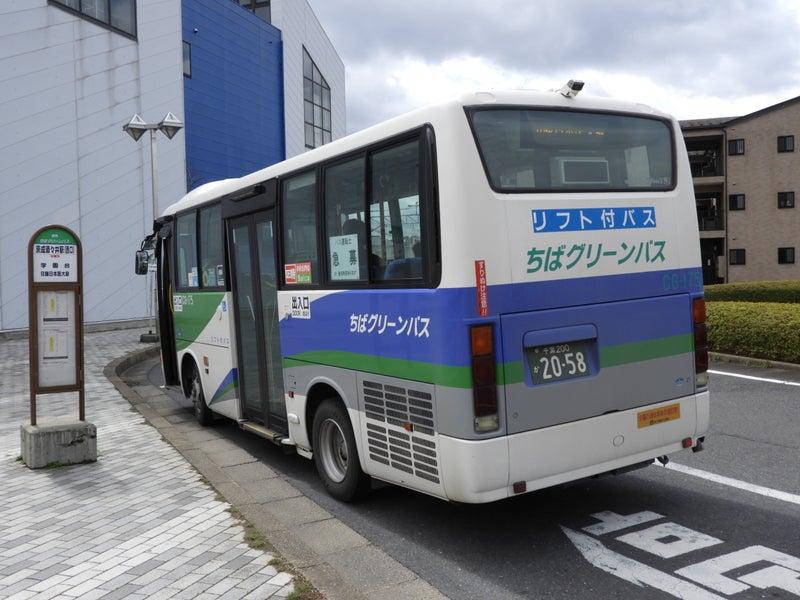 千葉 グリーン バス
