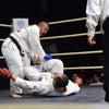 全日本格闘空手選手権 技の画像