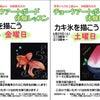 [再掲][今週末]夏の風物詩を描きます!小原薫先生のチョークアートボード体験レッスン受付中の画像