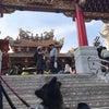 中華街へおでかけうにさんの画像