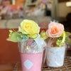 今日は福山バラ祭り‼️の画像