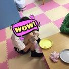 ◇5月7日、19日、20日◇toiro青葉台の記事より