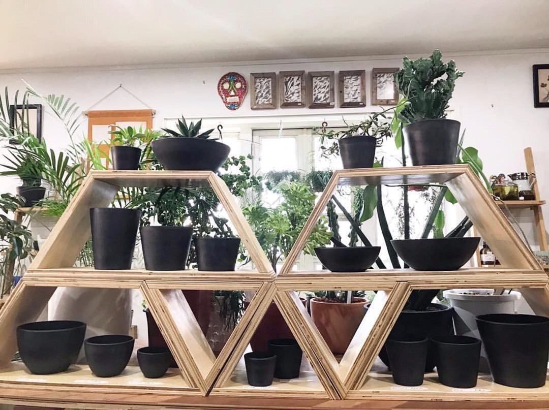 シンプル イズ ベスト!大人気、おしゃれな植木鉢に植え替えよう!