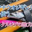 タチウオジギングにおすすめのメタルジグ9選 釣れる定番メタルジグ!、色・カラー・太刀魚