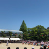 令和元年運動会の画像