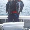 佐多岬りさ丸釣り情報