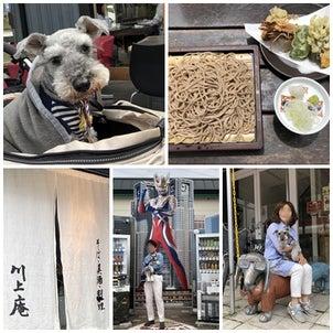 軽井沢プチ旅行の画像