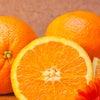 【オレンジスイート】一歩踏みだせる気持ちになったら。の画像