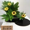 花さんぽ〰️生け花の画像