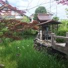 神光院に三弘法が集まる法要にお詣りさせていただきました。の記事より
