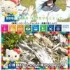#ハローキティ #国連広報 #SDGs  陸の豊かさも守ろう!の画像