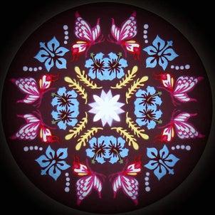 「蝶とハイビスカスのモチーフ」の画像