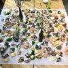 春の食材を使った日本料理のGrazing Table♪の画像