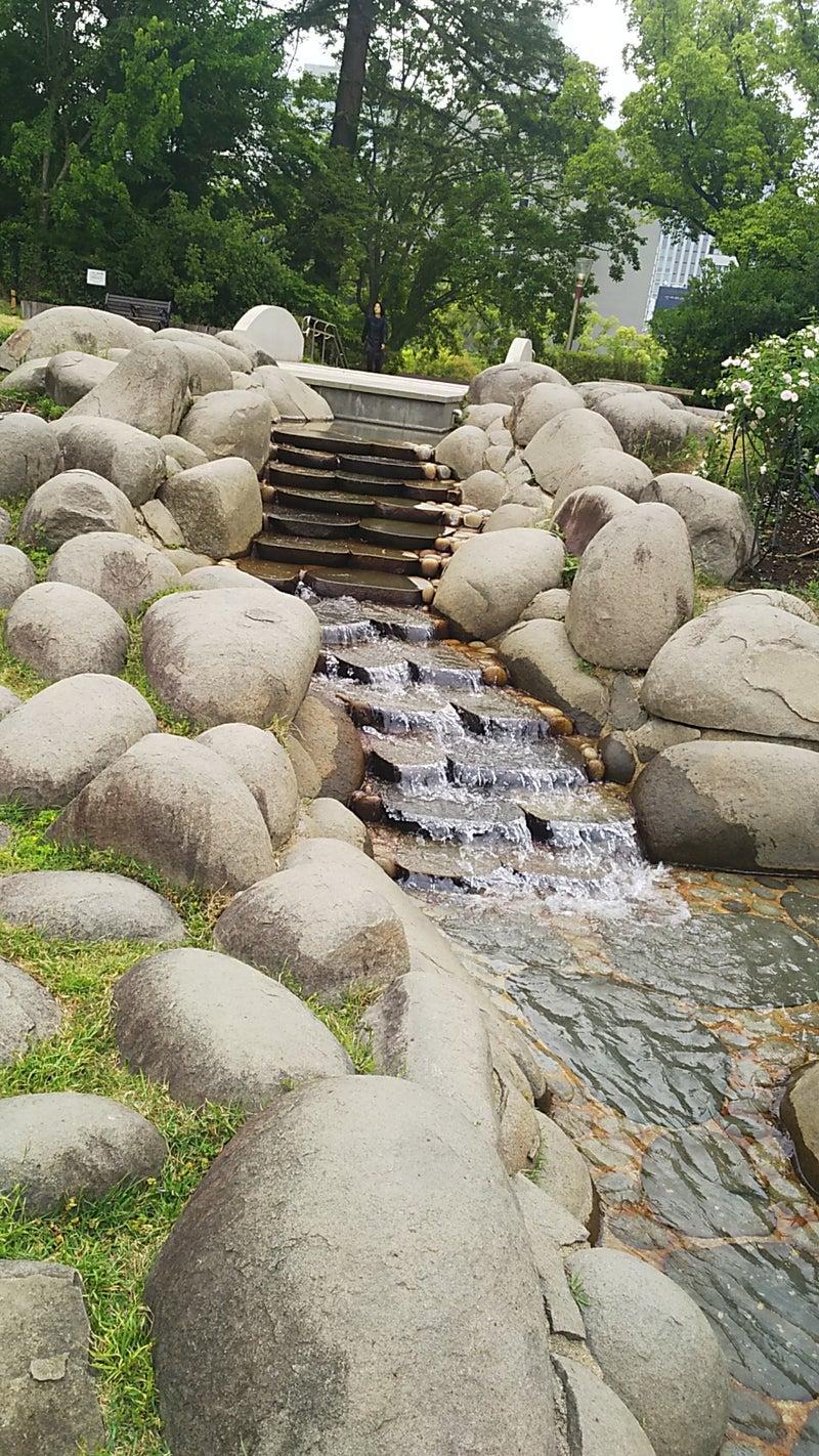 緑 の うつぼ 公園 アメブロ