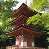 浄瑠璃寺、お気に入りですの画像
