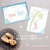 【残席2】7月9日   おうちパン × おやこで手形アートの画像