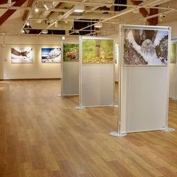 画像 「Hokkaider X写真展」小清水ギャラリートークを開催 の記事より 1つ目