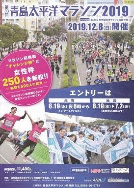 アオシマ 太平洋 マラソン