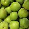 自然栽培梅シロップ教室開催の画像