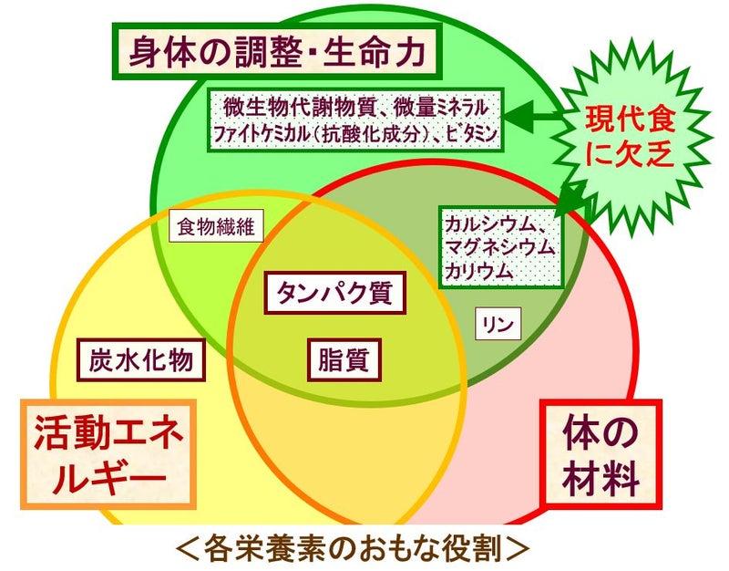 【食育リレーブログvol.54】栄養素とフードファディズム   ママ ...