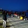 K-ZERO主催 黒鯛工房杯in広島の画像