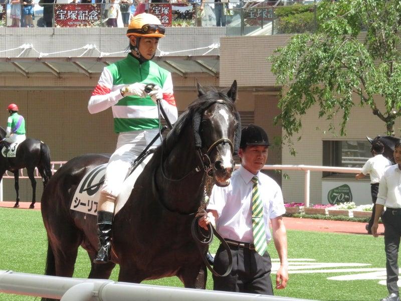 自由気馬馬に~オリックス・シチー・キャロット・ウイン応援ブログキャロ全馬放牧へ