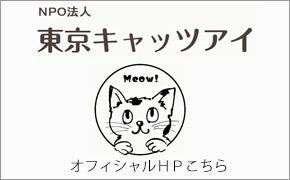 東京キャッツアイオフィシャルホームページ
