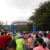第4回伊豆稲取キンメマラソンの画像