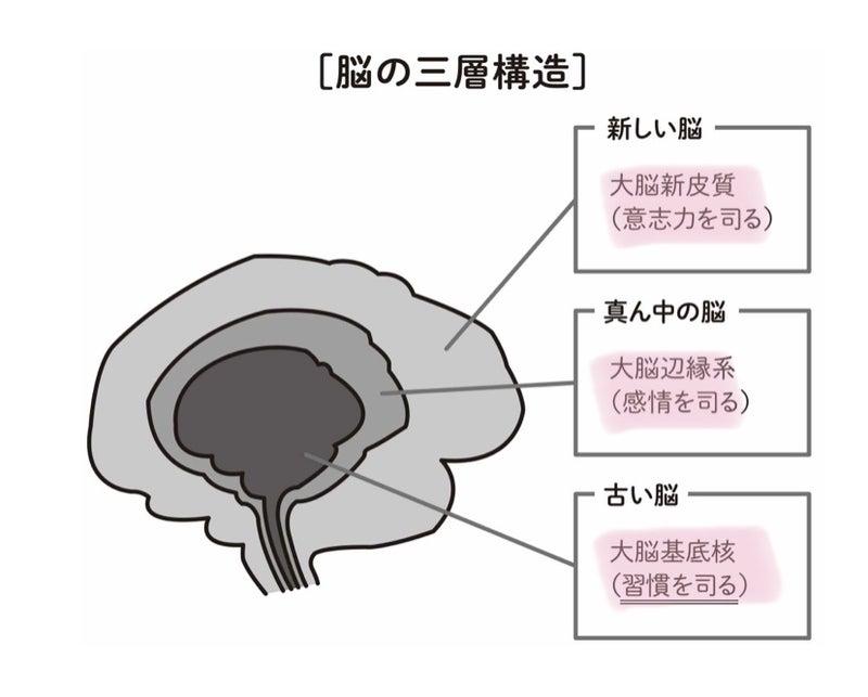 IMG_9400.jpg