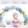 【2019/6/29開催】手形足形アート&あじさいリース撮影会の画像