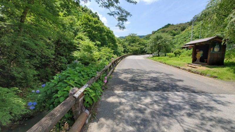 大分~宮崎へ国道326号ジブリ巡り | CELICAの行動日記♪