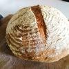 今日の酒種パンの画像