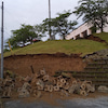 あさチャン!「新潟で震度6強の地震」の画像