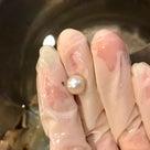貝から真珠をとりだしてきたよ☆レポートの記事より