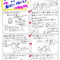 6/8(土) くじゅう稲星山  ガスガス&霧雨から劇的に晴れる!!
