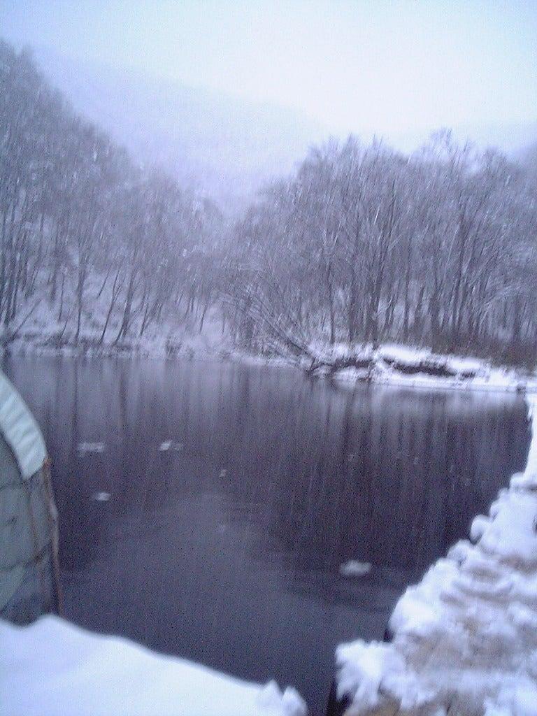 ワカサギ 西 湖畔