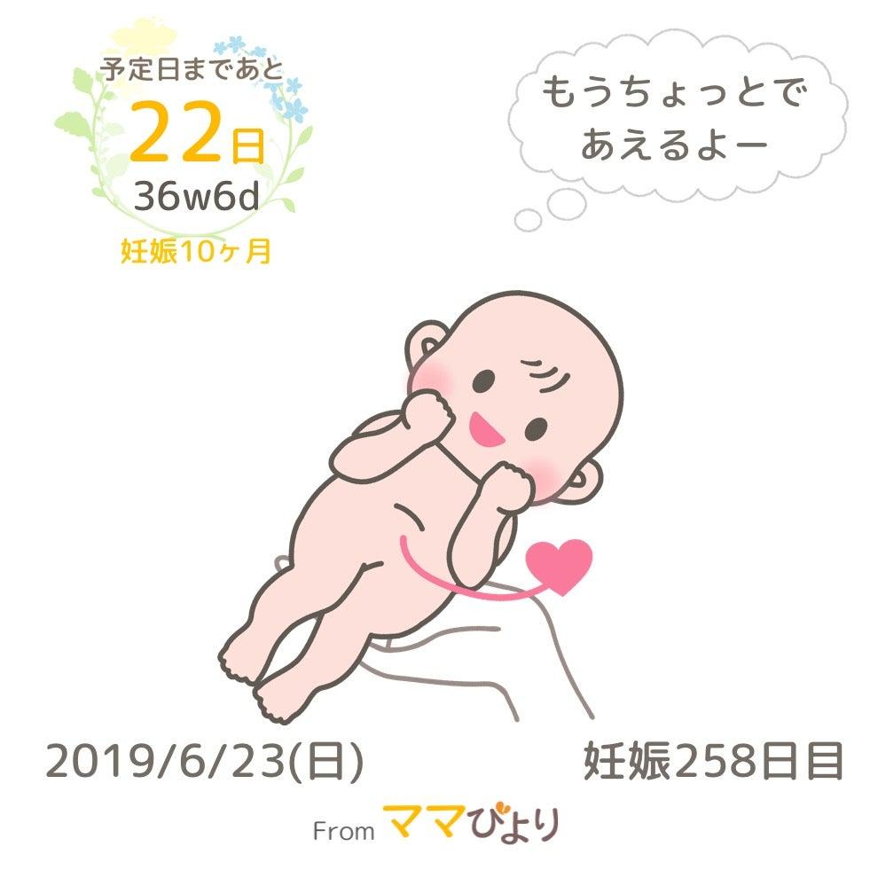 妊娠 中期 腹痛 ズキズキ