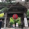 【2日目】鎌倉あじさい巡り④〜長谷寺・江の島〜の画像