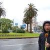 あさチャン!「熱低接近!宮崎中継」「大阪は厳戒態勢」の画像
