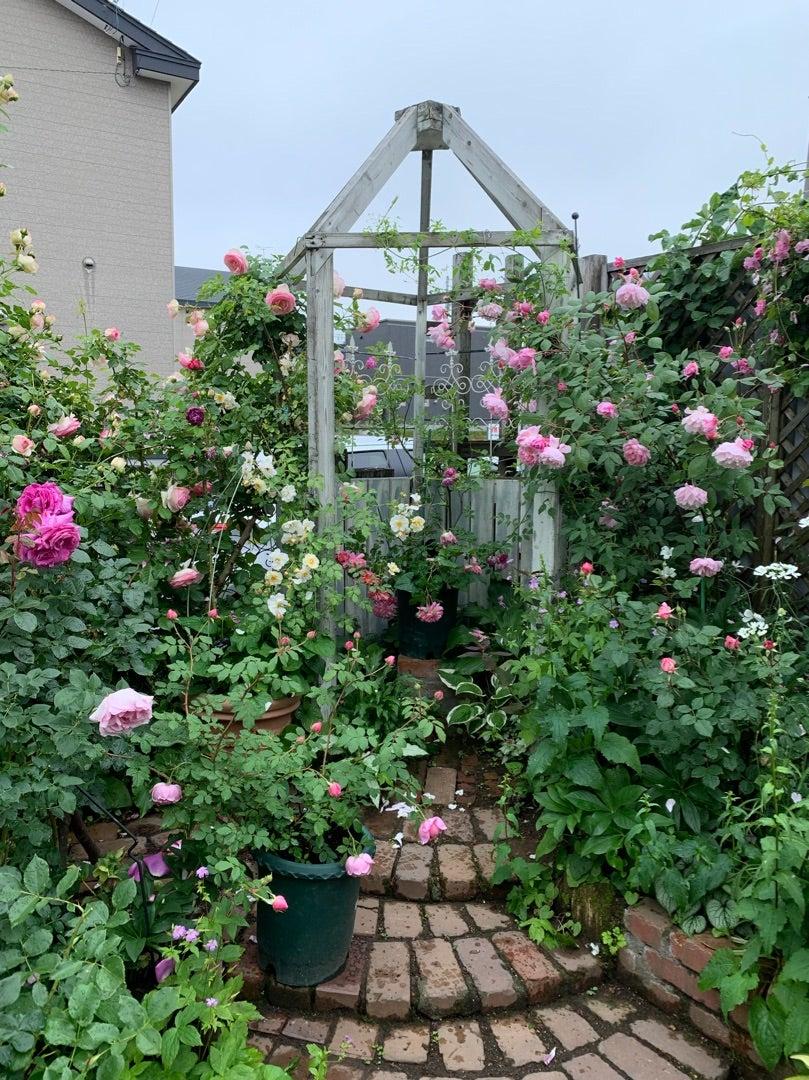 本日のブログは【長野と北海道のお庭巡り!Part1】です。